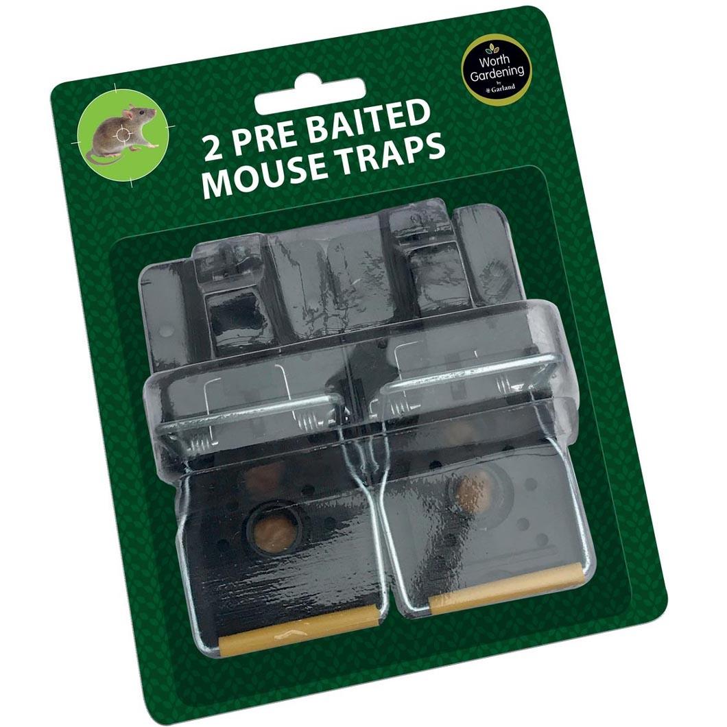 Rat & Mouse Traps