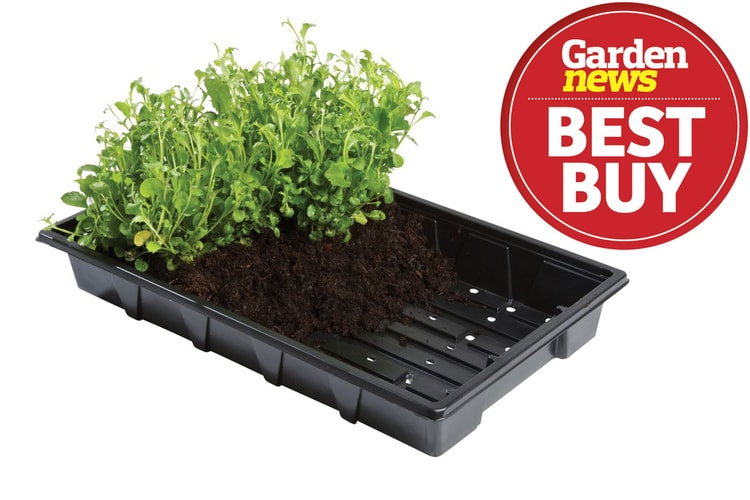 W0002 Professional Seed Trays