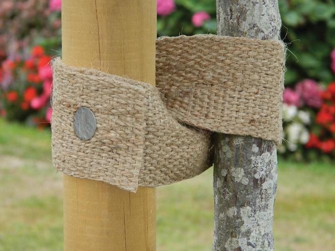 Natural Jute Webbing Tree Ties
