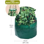 bean pea bag with free bean pea ring