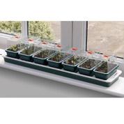 super 7 propagator electric window propagator with plant